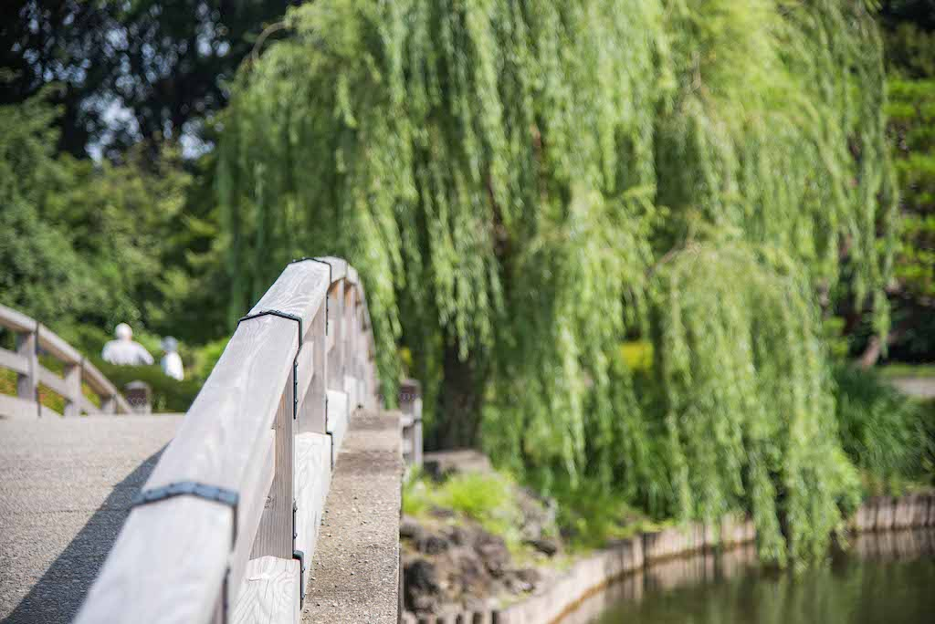 Japanese Bridge in Japanese Garden. Photography: https://www.instagram.com/rossharrison_tokyo/